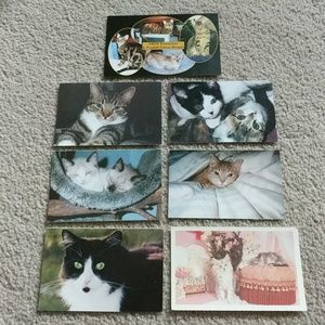 Kitty Cat Postcard Set of Seven